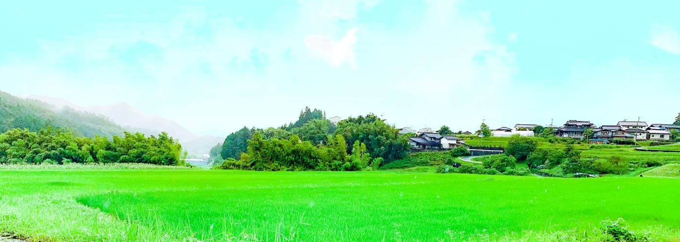 長野県阿智村の自然風景