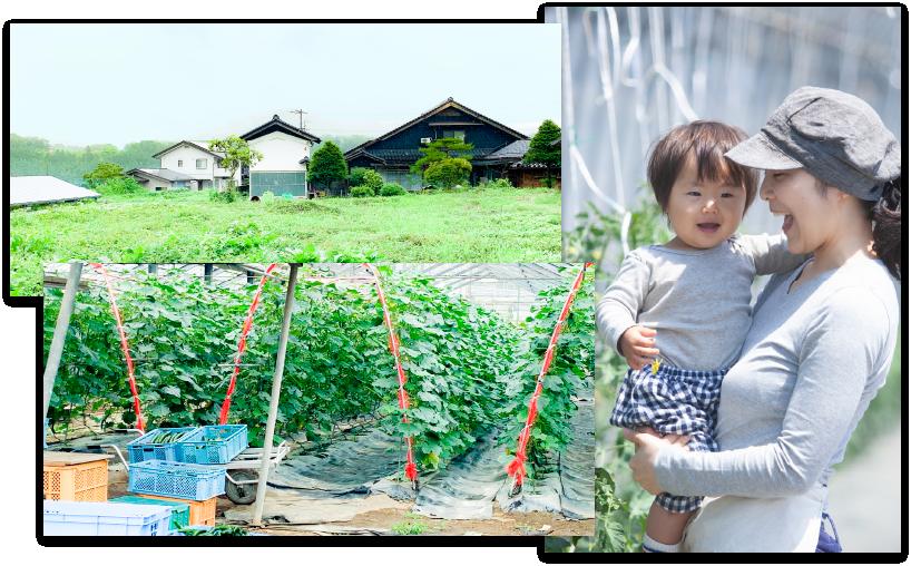 信州の自然と原料の栽培